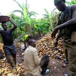 La Costa d'Avorio dopo il conflitto: insécurité, impunité, disegalité